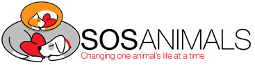SOS Animals UK